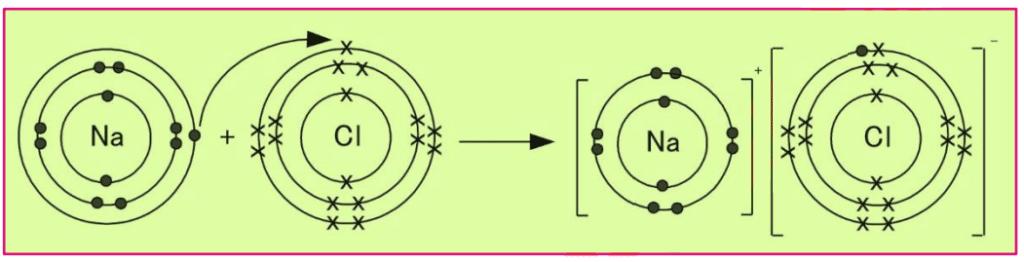 Chemistry 9 Solved Paper 2019 - 2